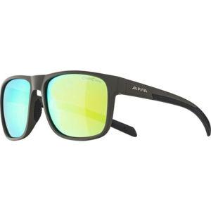 Alpina Sports NACAN III   - Unisex sluneční brýle