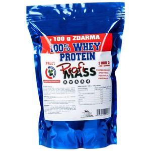 Profimass PROFI 100% WHEY PROTEIN 1000+100G BORŮVKA  NS - Protein